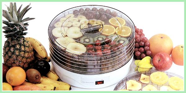 食品乾燥機からりんこ